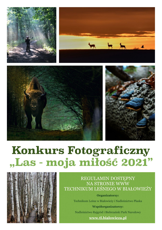 link plakat konkurs fotograficzny  las moja milosc